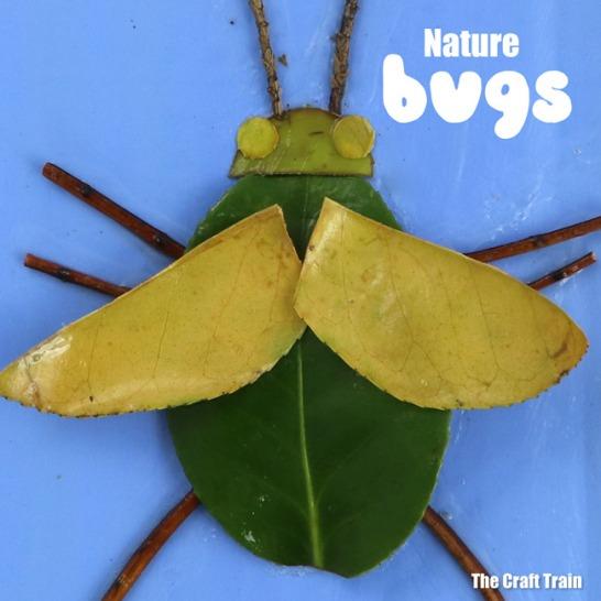 bugs-header