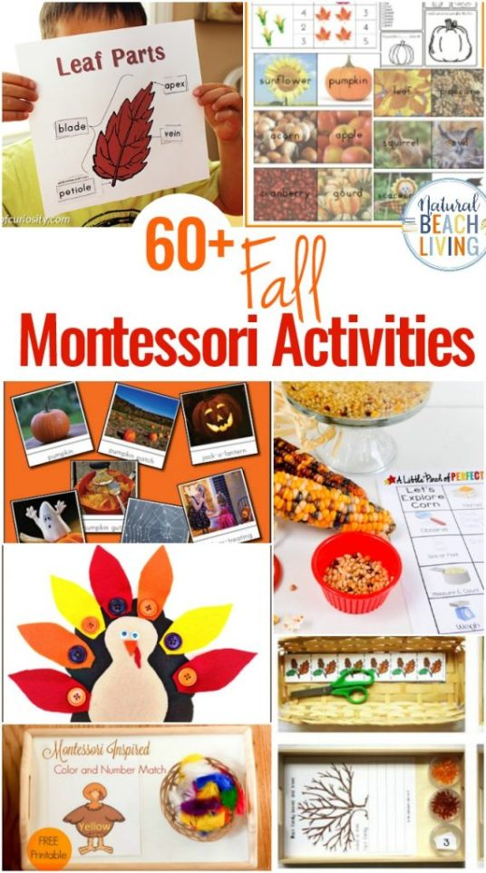 Montessori-Activities-Fall-Themes