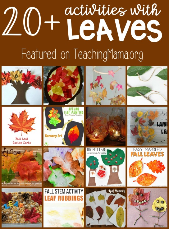 20-Activities-with-Leaves
