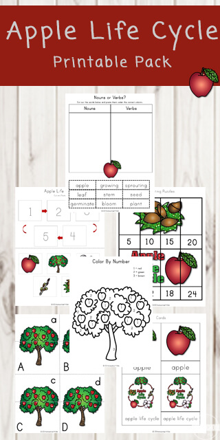 Apple-Life-Cycle-Printable-Pack