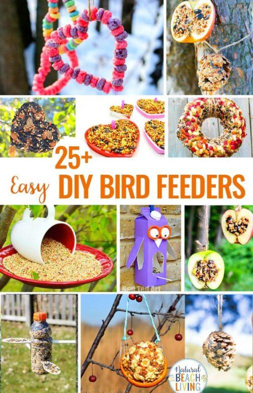 Easy-Homemade-Bird-Feeders.jpg