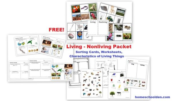 FREE-Living-Nonliving-Unit-Cards-Worksheets-Notebook-Pages.jpg
