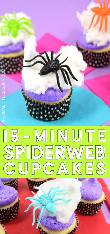 header-easy-spiderweb-cupcake-spider-halloween.jpg