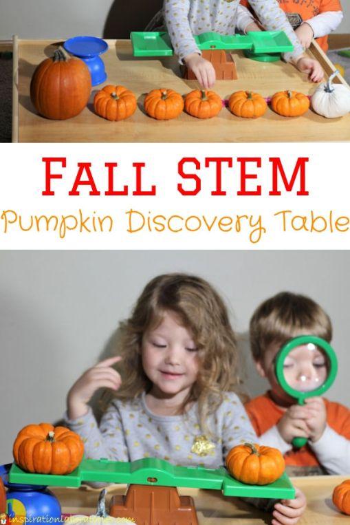 pumpkin-STEM.jpg