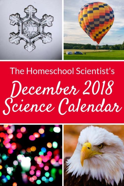 December-Science-Calendar.jpg
