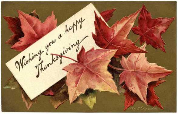 Free-Fall-Leaves.jpg