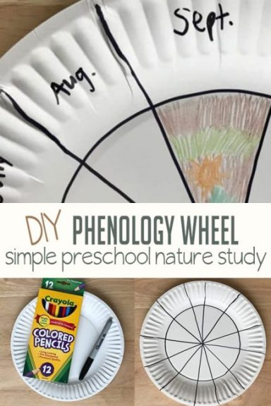 phenology-nature-study-feature.jpg