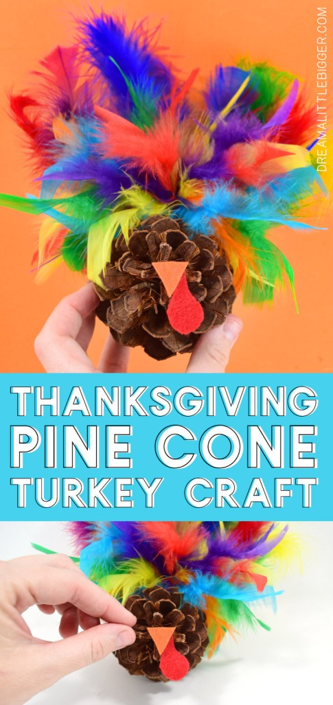 pine-cone-turkey-colorful-feather.jpg