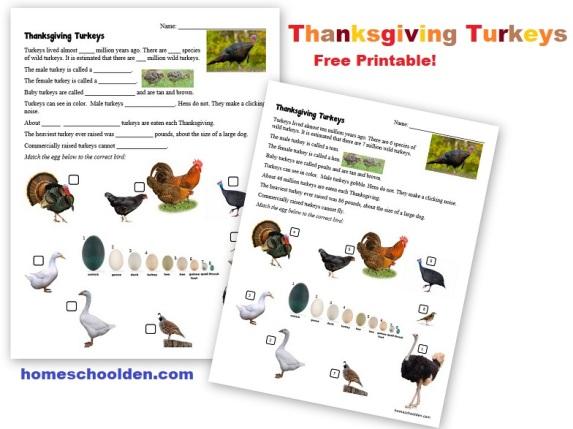 Thanksgiving-Turkeys-Printable-Free.jpg
