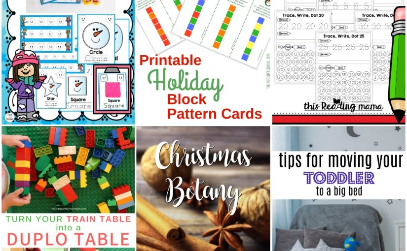 12.14 Block Pattern Cards, Snowman Shape, Number Handwriting Pages, Duplo Table, ChristmasBotany