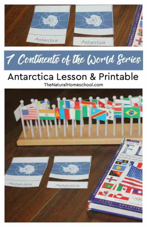 7-Continents-of-the-World-Series-Antarctica-Lesson-Printable.jpg