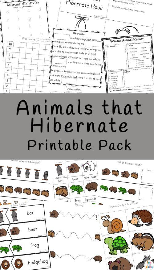Animals-that-Hibernate-Printable-Pack.jpg