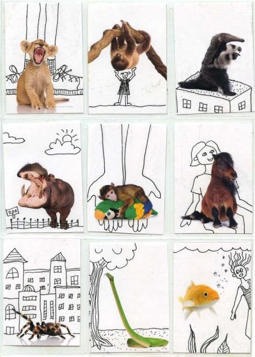 ATC-Animals-733x1024.jpg