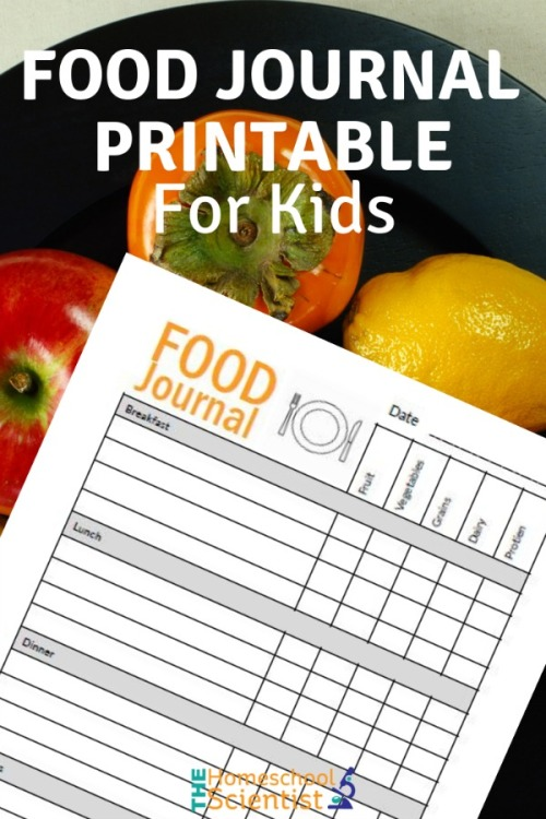 food-journal-printable-pin.jpg