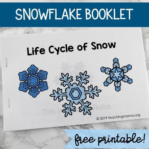 LIFE-CYCLE-BOOKLET.jpg