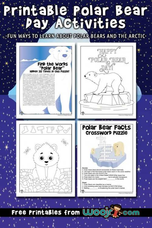 polar-bear-day-activities.jpg