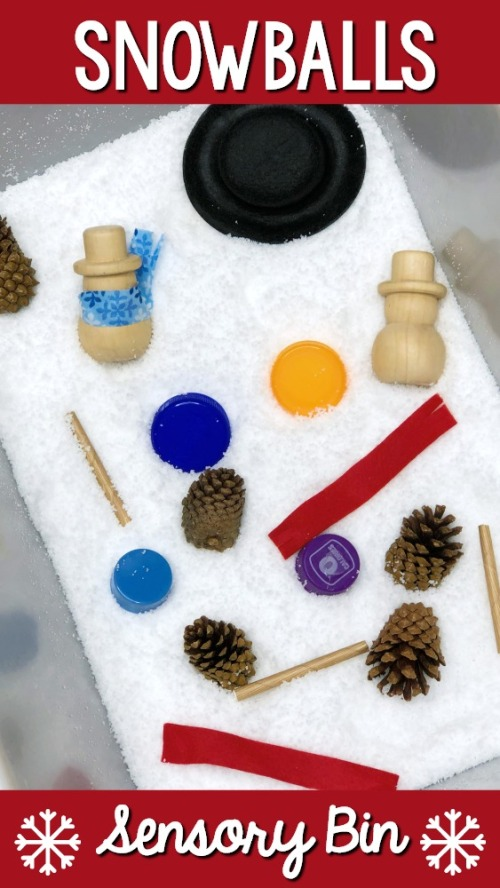Winter-Theme-Sensory-Bin-.jpg