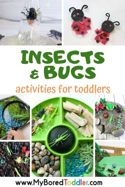 My-Bored-Toddler-Activities-and-crafts-with-insects-and-bugs-for-toddlers.jpg