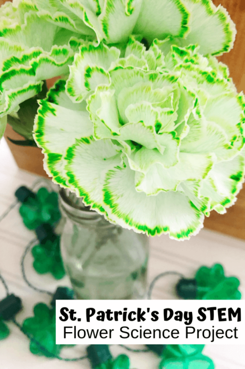 St.-Patricks-Day-Flower-Science-Project-680x1020.png