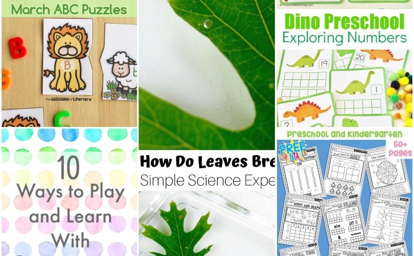 03.10 Dinosaur Number Frames, Alphabet Puzzles, Spring Work Sheet Book, Plants and Breathe, Learn with DotMarkers