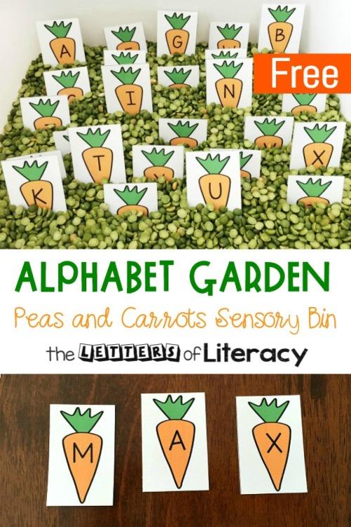 Alphabet-Garden-Sensory-Bin-650x975.jpg
