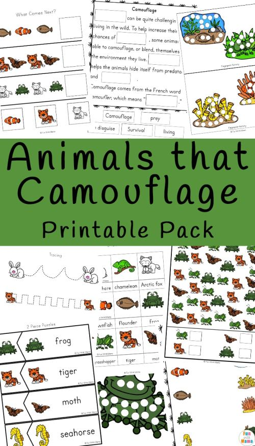 Animals-the-Camouflage-Printable-Pack.jpg