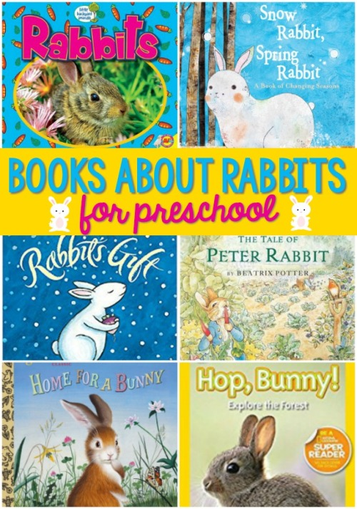 Books-About-Rabbits-for-Preschool.jpg