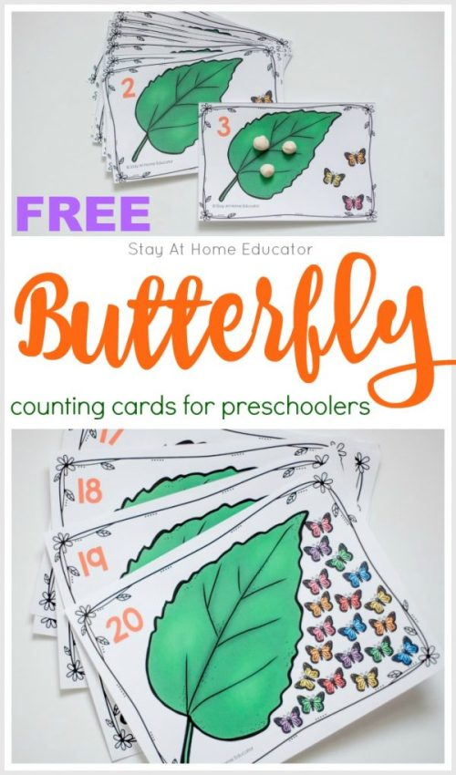 Butterfly-Life-Cycle-Counting-Cards.011-600x1020.jpg