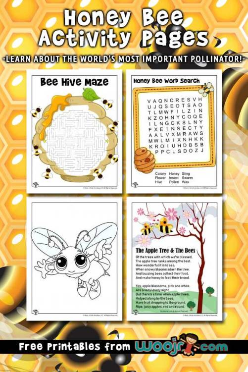 honey-bee-activities.jpg
