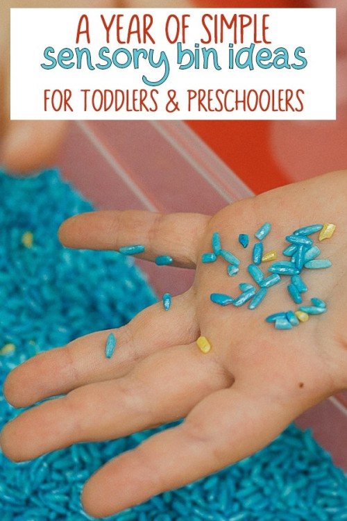 A-year-of-simple-sensory-bin-ideas-for-toddlers-and-preschoolers.jpg
