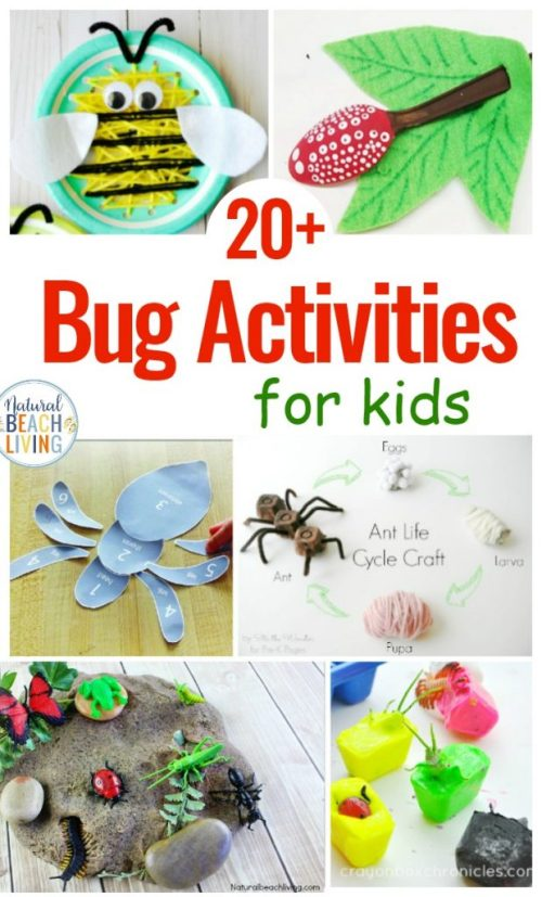 Bug-Activities-for-Preschool-619x1024.jpg