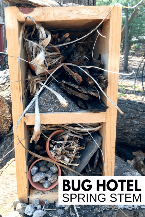 BUG-HOTEL.png
