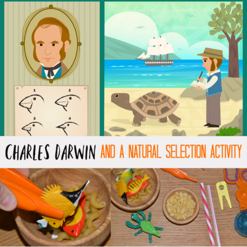 Charles-Darwin-and-a-natural-selection-activity-1024x1024.png
