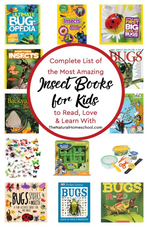 Complete-List-of-the-Most-Amazing-Insect-Books-for-Kids-to-Read-Love-and-Learn-With.jpg