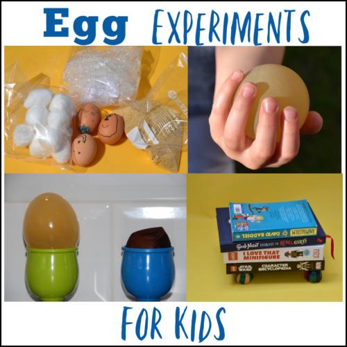 Egg-Experiments-Facebook-1-1024x1024.png