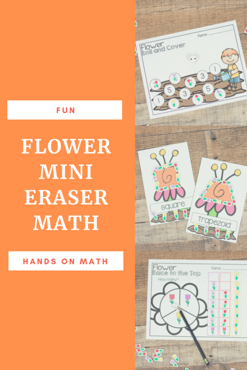 Flower-mini-eraser-math.png