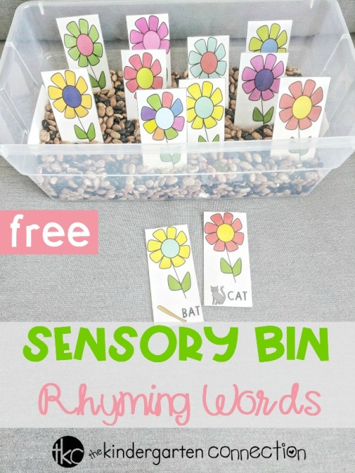 Flower-Sensory-Bin-Rhyming-Words-pin.jpg