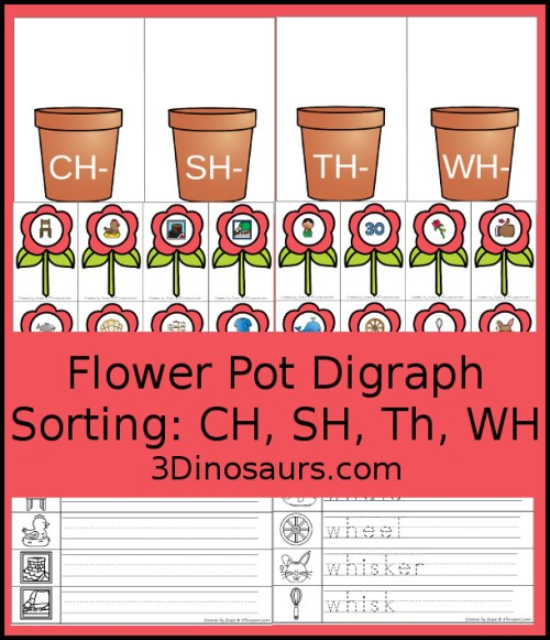 flowerdigraphsorting-blog.jpg