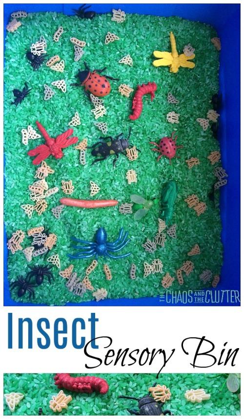 Insect-Sensory-Bin.jpg