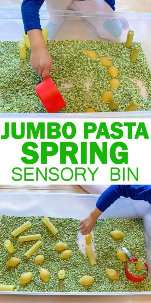 jumbo-pasta-spring-sensory-bin-for-toddlers-image-7-512x1024.jpg