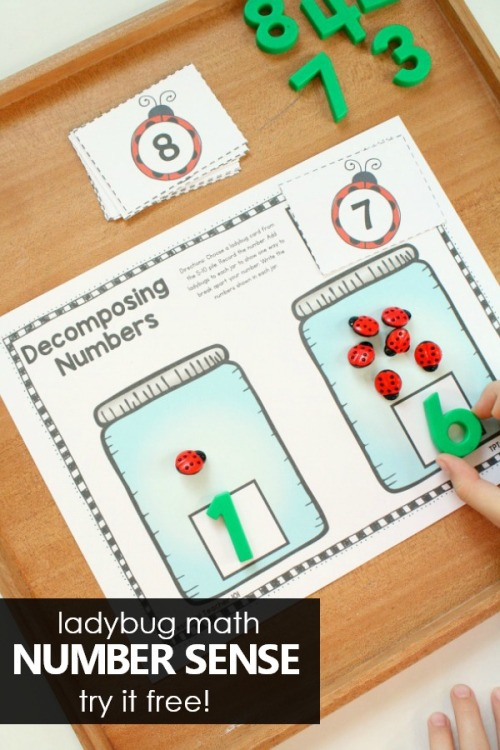 Ladybug-Number-Sense-Math-Activities-preschool-math-kindergarten-numbersense-freeprintable-.jpg
