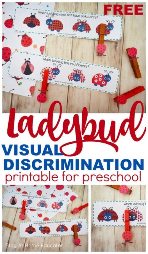 Ladybug-Visual-Discrimination-Cards.2.pin_-583x1000.jpg