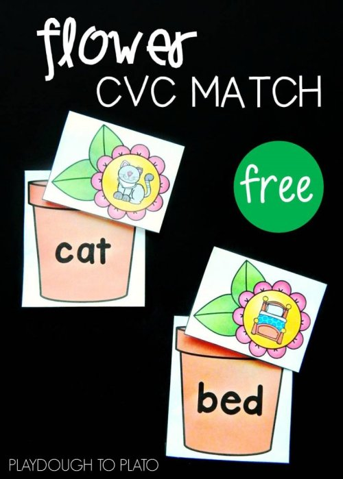 spring-flower-CVC-match-768x1075.jpg