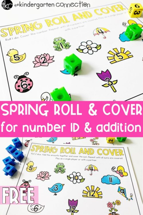 spring-roll-and-cover-pin-2-683x1024.jpg