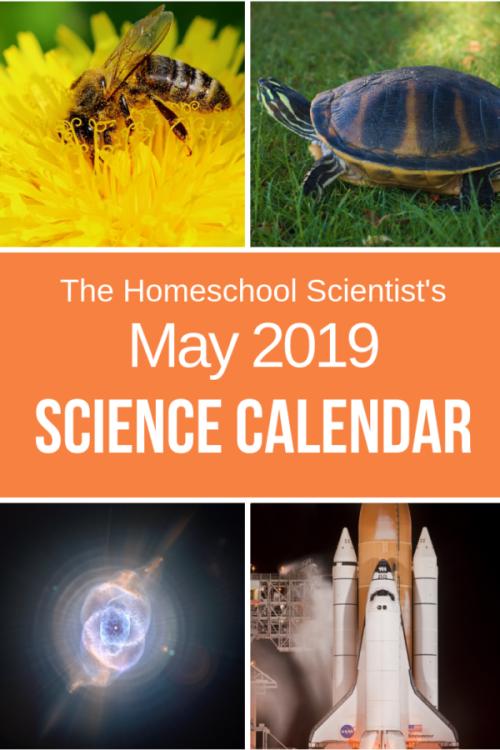 May-science-calendar-pin-e1556718982960.png