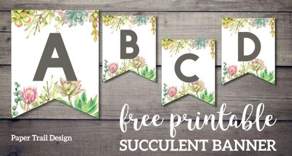 Succulent-banner-short.jpg